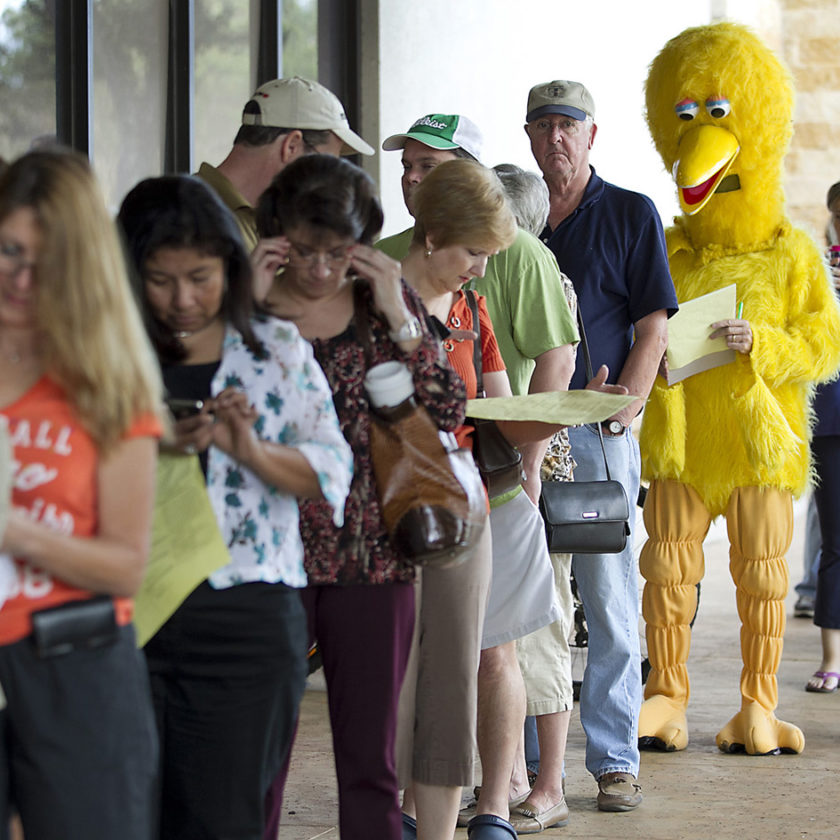 People stand line to vote, Big Bird is among them.